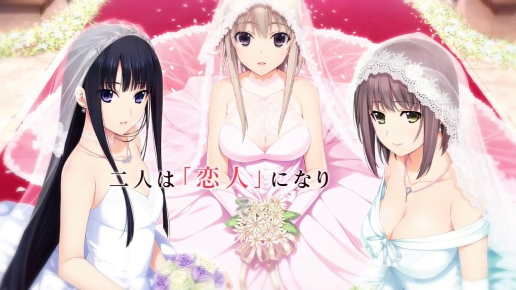 The game's name is xCation Niitzuma Lovely, three virtual character or girls in whom you can marry