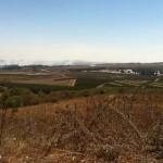 JAN front over the Golan border