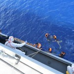 The sinking boats of immigrants over the past week in the Mediterranean is feared to have killed more than 700 people