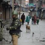 Republic Day of India, Kashmir Black Day