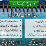 None of the allies of the Tehreek-e-Insaf's government at Kalabagh Dam are opposed to the Center